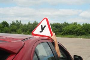 Как правильно выбрать автошколу